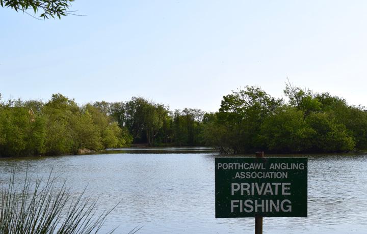 Meadow Lake 2